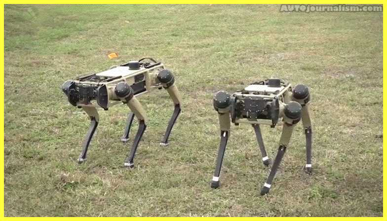 Top-10-Most-Advanced-Robot-Dogs-in-the-World
